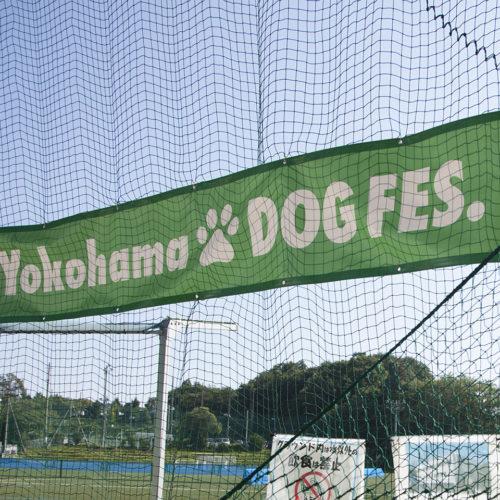 横浜ドッグフェスプレ開催レポート