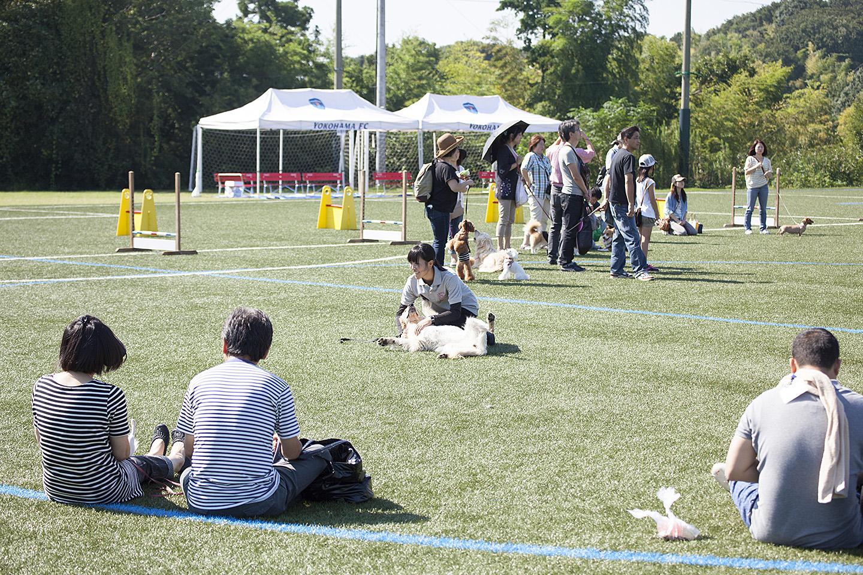 大島ドッグトレーニングスクールによる講座も開催