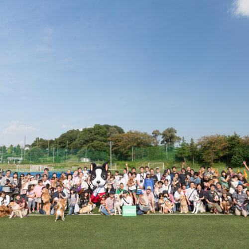横浜ドッグフェスVol.3開催レポート〜アジリティー体験〜