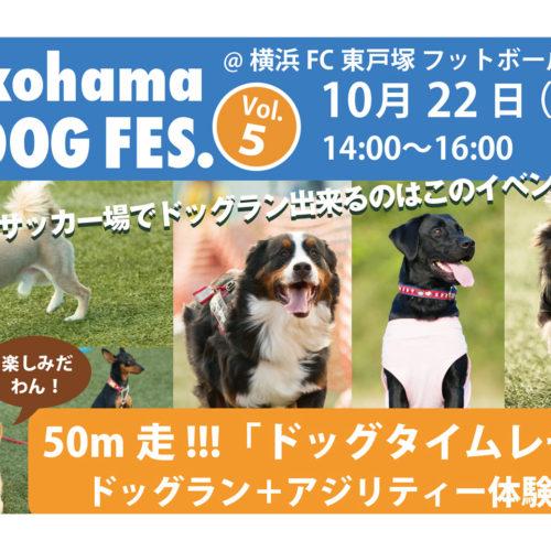 横浜ドッグフェスVol.5開催告知