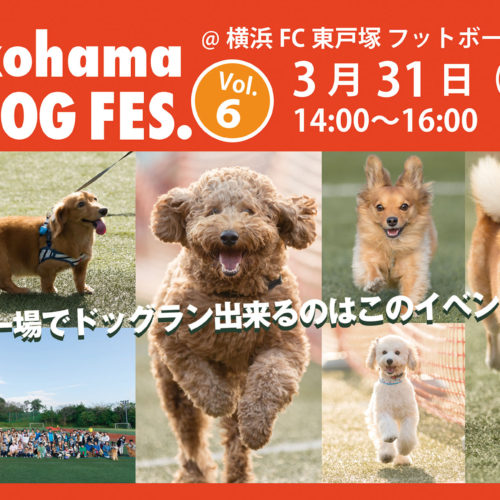 Yokohama DOG FES. Vol.6 3月31日開催!