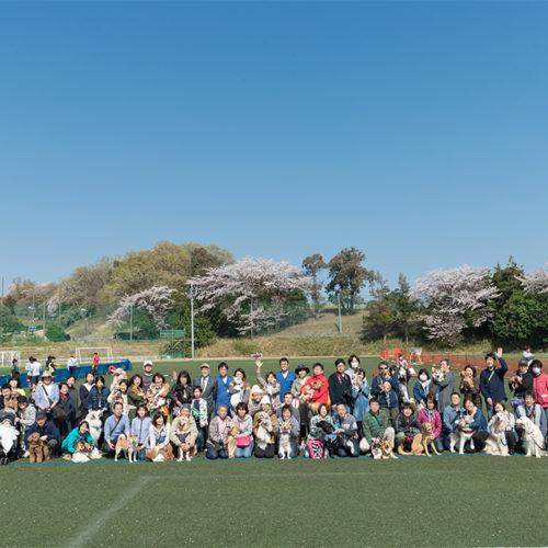 横浜ドッグフェスVol.6開催レポート〜ドッグタイムレースにアジリティと充実のフェスに〜