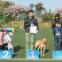 横浜ドッグフェスVol.6開催ギャラリーレポート